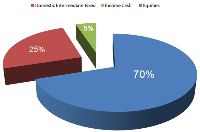 Cost Allocation Pie Chart